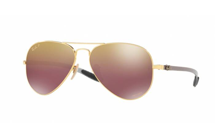 Ray-Ban 8317CH