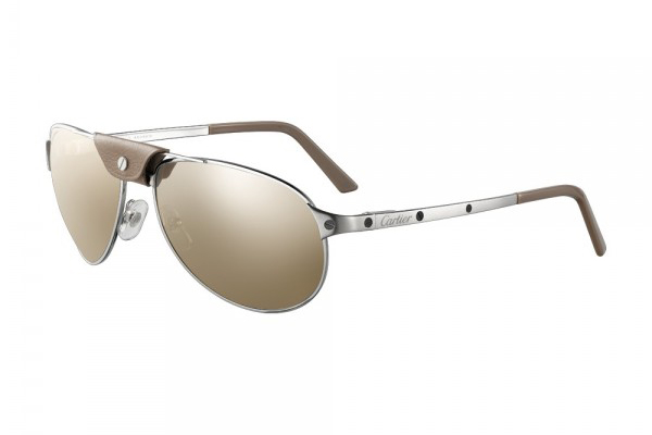 CARTIER SANTOS-DUMONT IN BRUSHED PLATINUM EFFECT (T8200951)